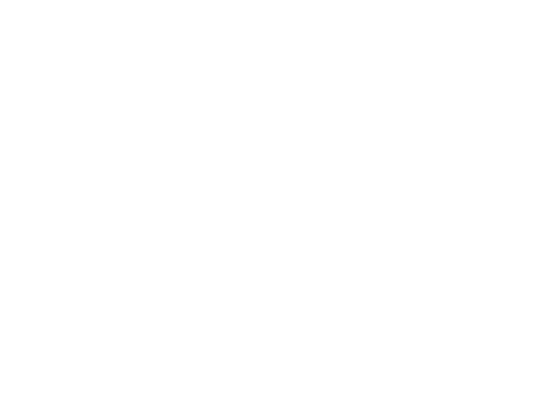 Logo Boutique Hotel Navona Colors